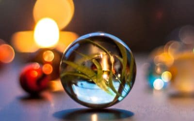 Mindfulness, Losing Your Marbles, & Finding Them (and Yourself) Again